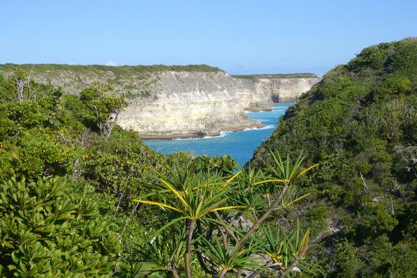 guadeloupe-ile-nature-falaise