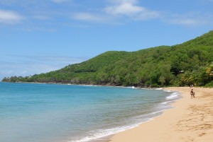 plage-grande-anse-basse-terre-guadeloupe