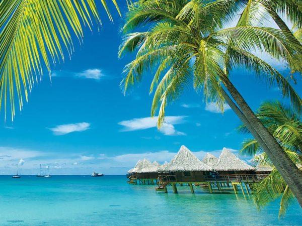tahiti et ses iles polynesie beachcomber viadream. Black Bedroom Furniture Sets. Home Design Ideas
