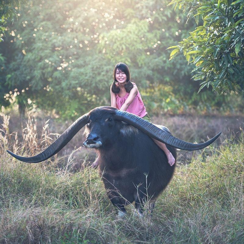 A Pak Sao en croisière au Laos avec Via Dream